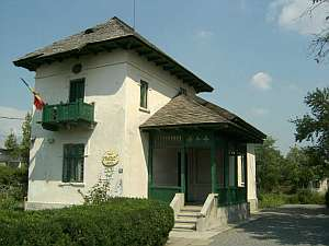 muzeulgheorghepetrascu