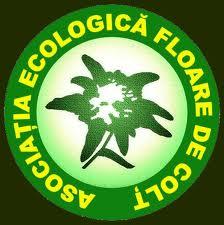 asociatia_ecologica_floare_de_colt_logo