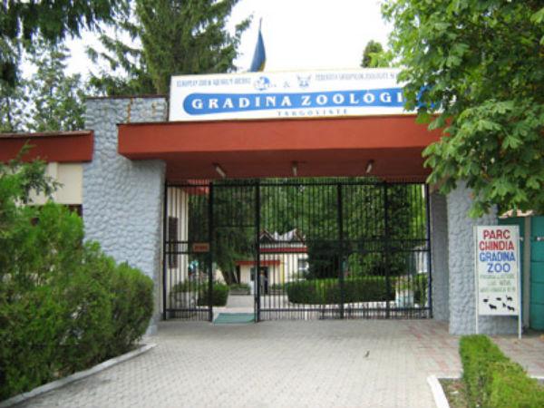 Grădina Zoologică Târgoviște angajează îngrijtori animale. Vezi alte posturi în sistemul bugetar