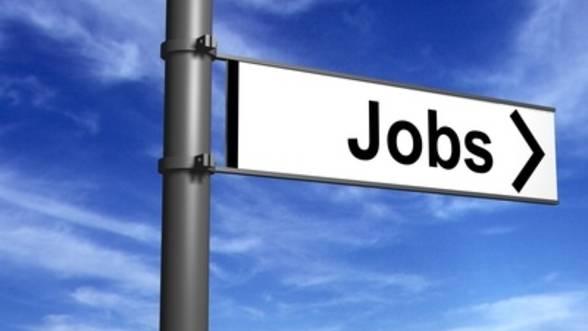 Peste 300 de locuri de muncă disponibile  pentru persoanele aflate în căutarea unui job