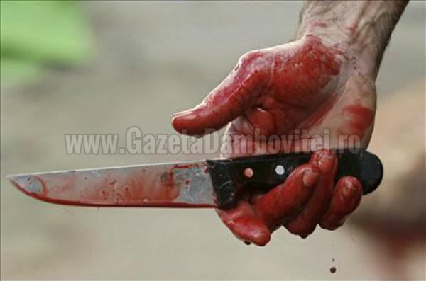 TITU: Un conflict spontan, pe fondul alcoolului, s-a încheiat scăldat în sânge