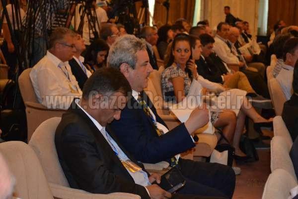delegatie dambovita congres fuziune PDL - PNL (5)
