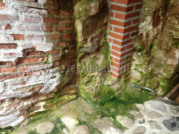 resturare curtea domneasca (2)