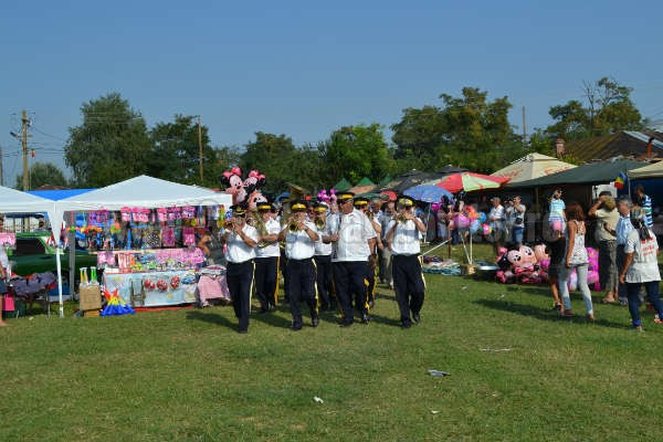 zilele comunei potlogi 2014 (14)