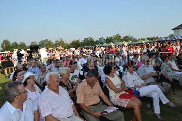 zilele comunei potlogi 2014 (18)