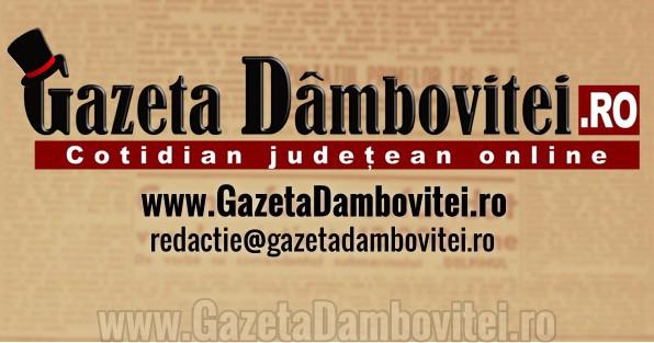 Gazeta Damboviței - Cotele de trafic ale lunii februarie, în creștere față de ianuarie