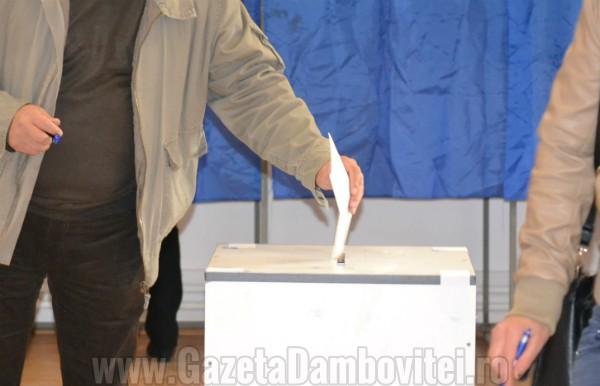 CCR: Prelungirea mandatelor aleșilor locali și data alegerilor, neconstituționale