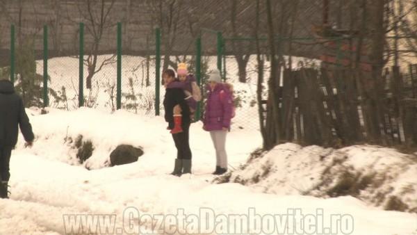iarna rau alb1