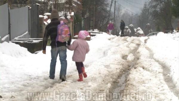 iarna rau alb4