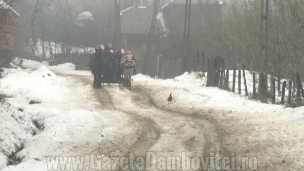 iarna rau alb7