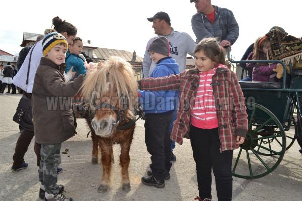 ponei (2)