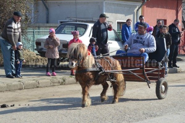 Un ponei a fost vedetă la Paștele Cailor! FOTO și VIDEO