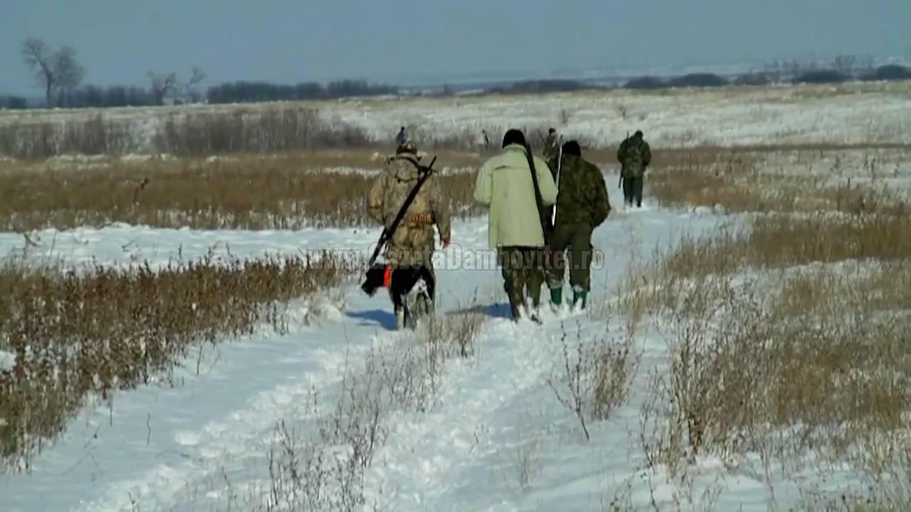 DÂMBOVIȚA: Vânător împușcat în genunchi. Vânătoarea era organizată legal