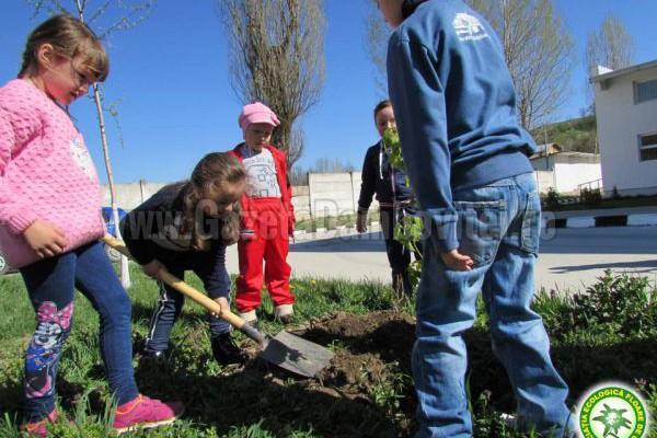 """De Ziua Pământului, copiii Grădiniței """"Dumbrava Minunată"""" din Fieni au plantat pomi"""