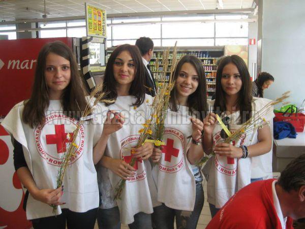 ariana-anghelescu-crucea-rosie (1)