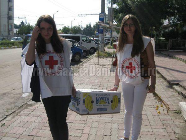 ariana-anghelescu-crucea-rosie (4)