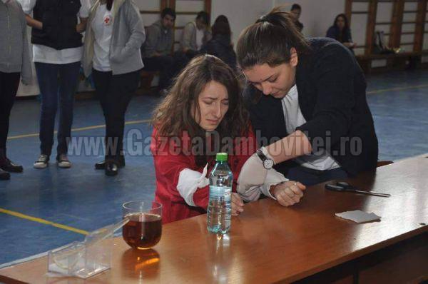 georgiana-zarnescu-crucea-rosie2