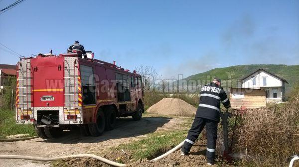 Incendiu de vegetație la Viforâta (FOTO)
