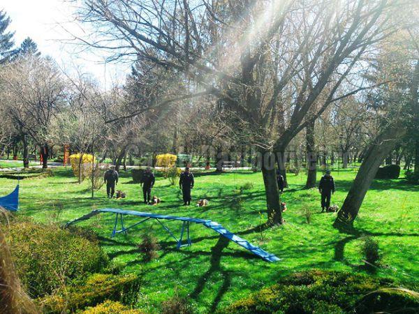 jandarmi parc (11)