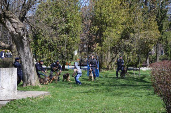 jandarmi parc (7)