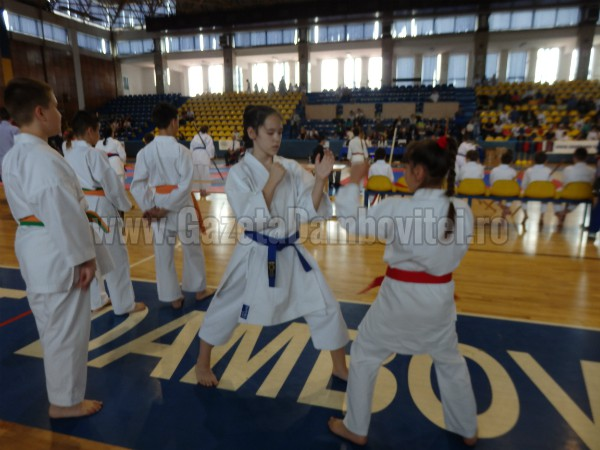 karate (7)_600x450