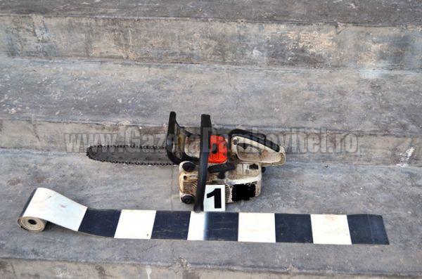 lemn furat (1)