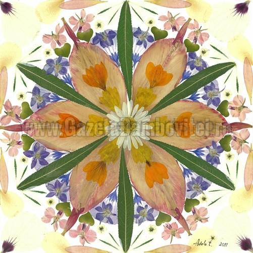 Floarea vietii2_mandala