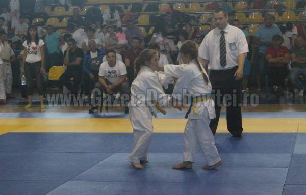 judo (1) - Copy