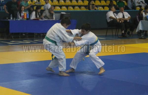 judo (4) - Copy