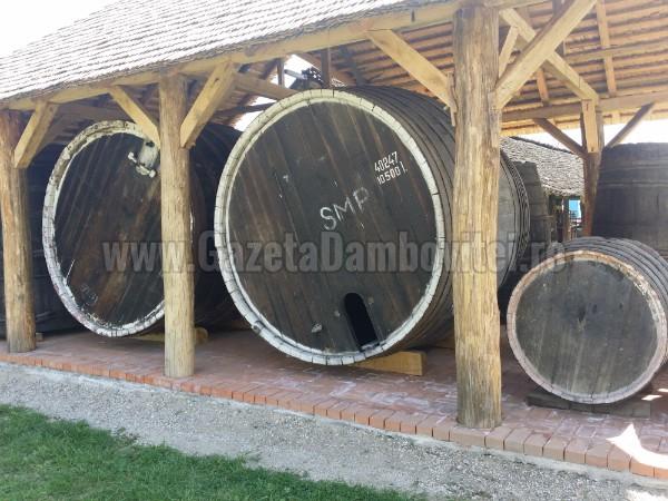 muzeul vinului (17)