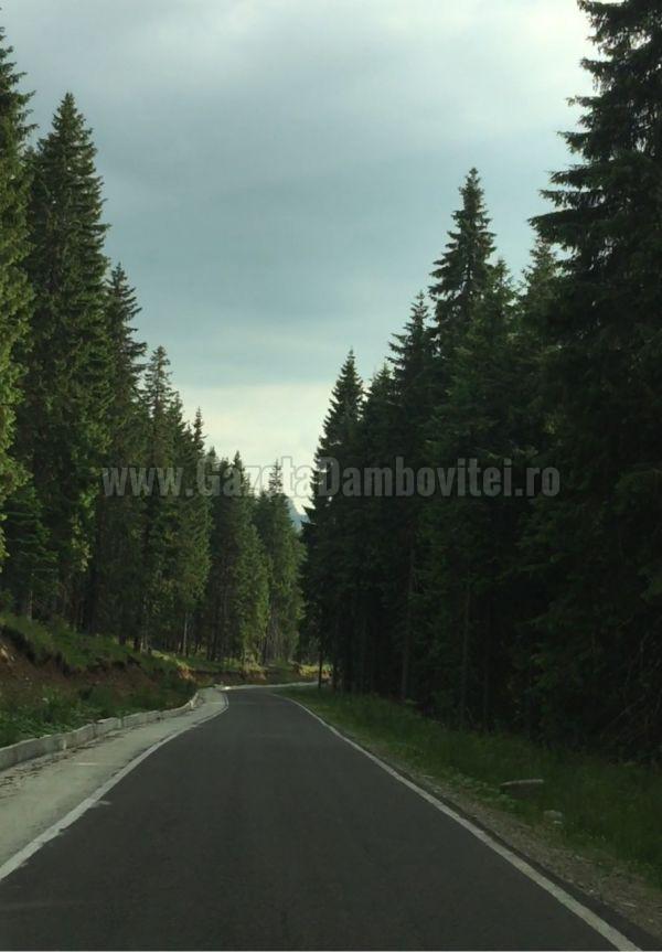 asfalt munte (1)