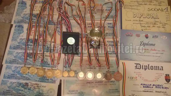 medalii diplome
