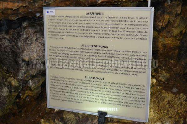 pestera ialomitei (20)