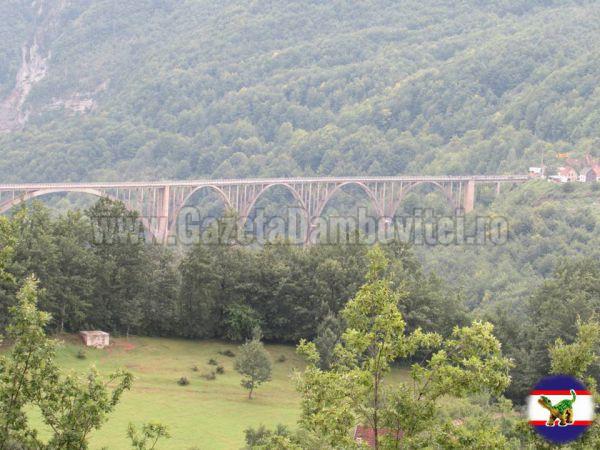 1.Podul peste Tara