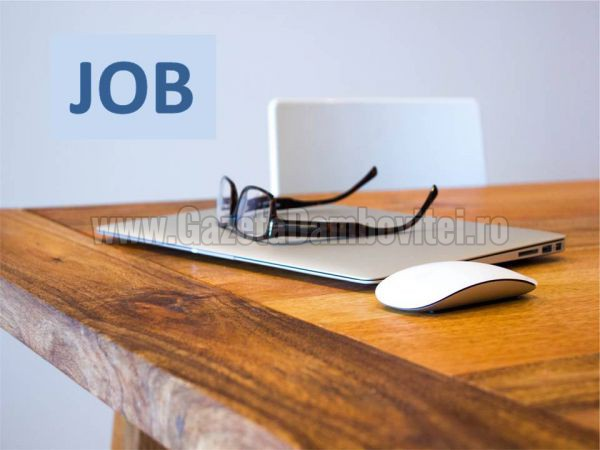 A.J.O.F.M.Dâmbovița organizează selecție pentru studenții care doresc să lucreze ȋn Germania