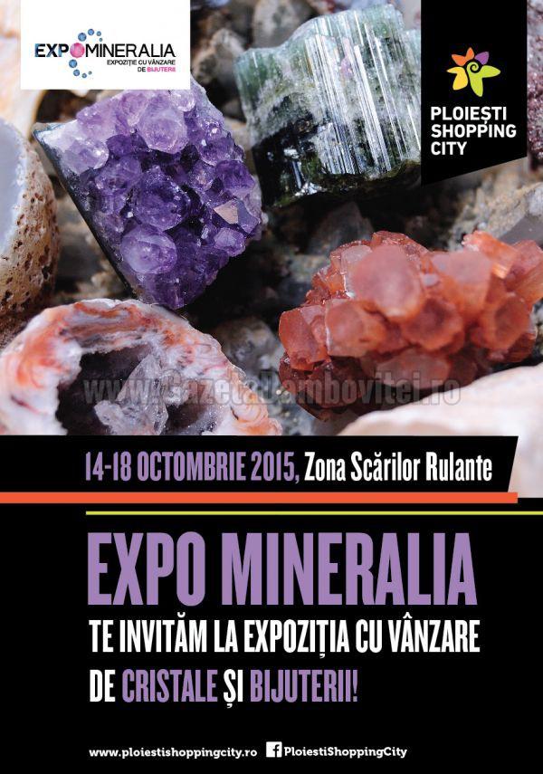 ExpoMineralia la Ploiesti Shopping City (1)