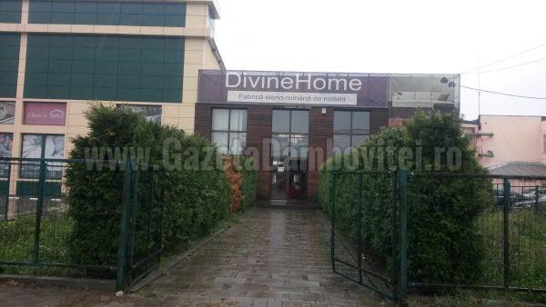 divine home19