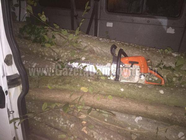 ROMSILVA: Pădurar ucis de hoții de lemne. Bătut și împușcat a fost abandonat într-o vale