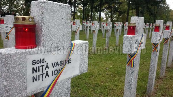 teis cimitir de onoare (8)_r