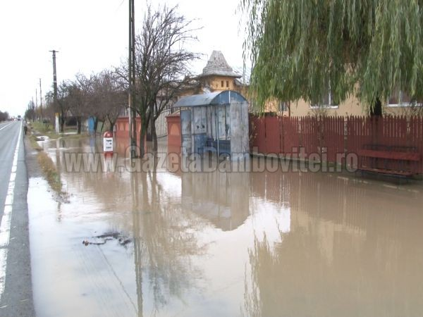 inundatii ilfoveni (10)