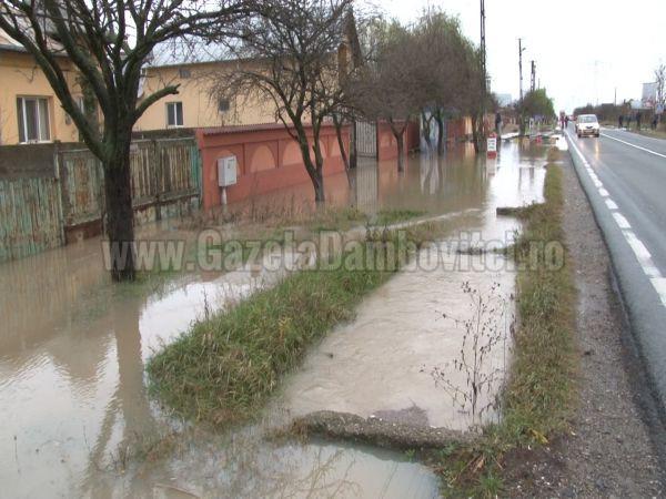 inundatii ilfoveni (14)