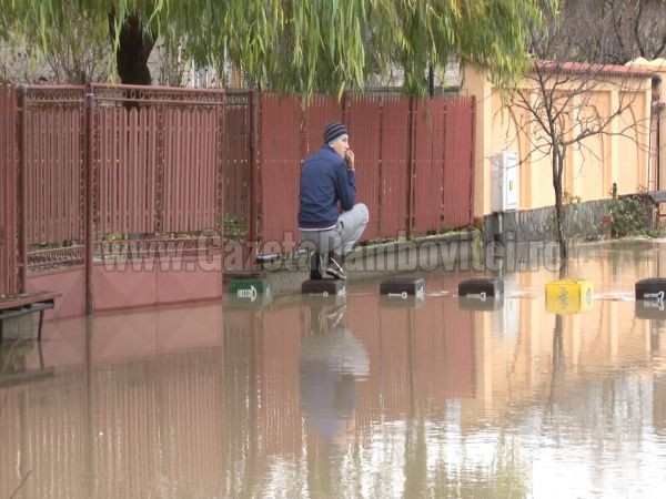 inundatii ilfoveni (15)