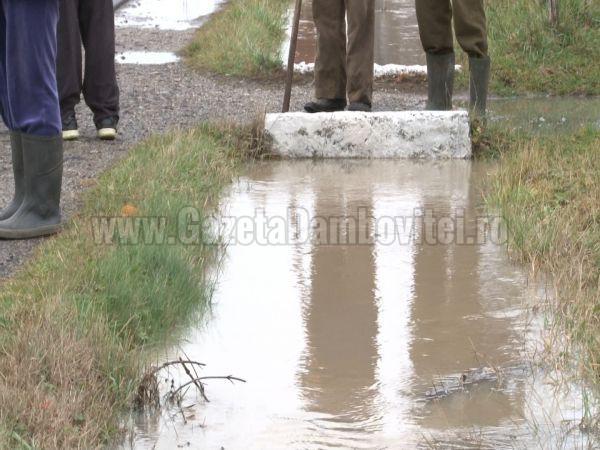 inundatii ilfoveni (21)