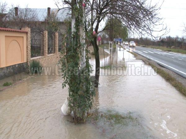 inundatii ilfoveni (9)