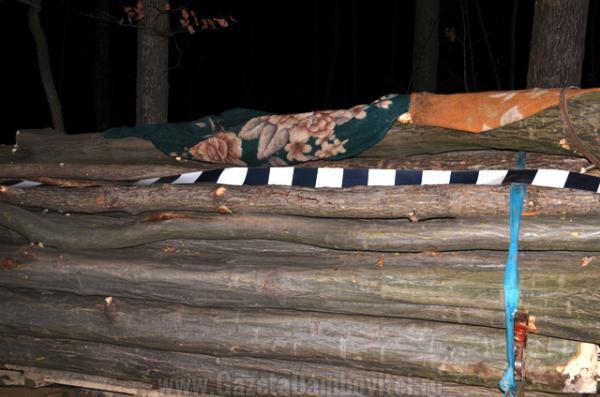 valea mare furt lemne (3)_r