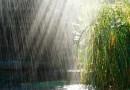 ANM anunță ploi și vijelii în toată țara. Vezi cum e vremea la Târgoviște!