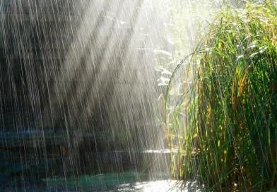 METEO: Temperaturi ridicate, dar nu scăpăm de ploi