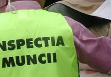DÂMBOVIȚA: Minori folosiți ca zilieri, fără respectarea legii