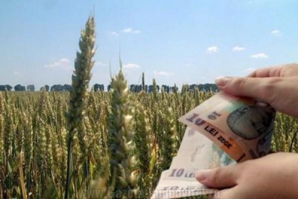DÂMBOVIŢA: ANI acuză un funcţionar APIA că şi-a dat singur subvenţii