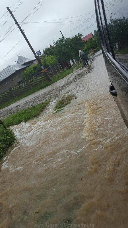 inundatii aninoasa 1